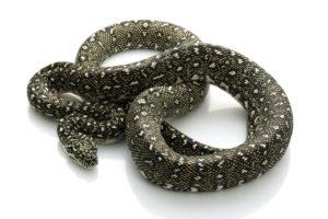Diamond Python Breeder