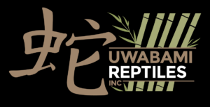Uwabami Reptiles